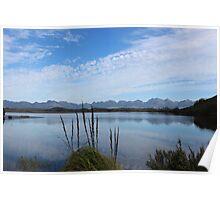 Lake Pedder   #202   near dam  Poster