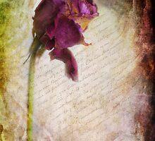 French Rose by Yhun Suarez