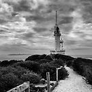 Morning at Point Lonsdale Lighthouse by Bree Schammer