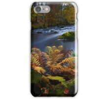 Autumnal Tones iPhone Case/Skin