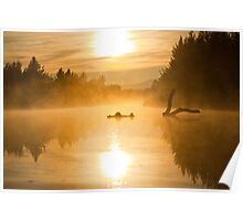Morning Mist - Canberra Lake Poster