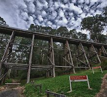 Trestle Bridge by Shari Mattox