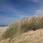 90 Mile Beach Shrubs by Shari Mattox