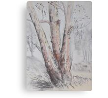 Tree landscape in Narrabri NSW Canvas Print