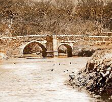 Lerryn Bridge by Catherine Hamilton-Veal  ©