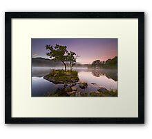 The Rydal Tree Framed Print