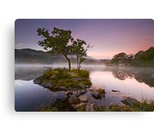 The Rydal Tree Canvas Print