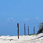 New Smyrna Beach, Florida by Kristy  Dorris
