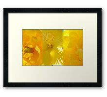 Sending You Sunshine... Framed Print
