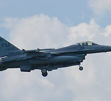 FM AF 87 0233 F-16C Fighting Falcon by Henry Plumley