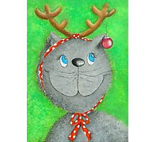 Christmas Cat :-) Photographic Print