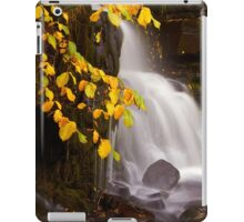 Autumn Falls iPad Case/Skin