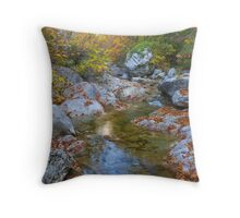 In Paklenica Throw Pillow