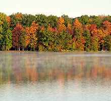 Steam Rises over a Fall Reflection by BarbL