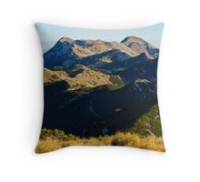 A view to the top Throw Pillow