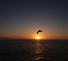 Another Nice Sunset In The Paradise - Otra Puesta Del Sol Bonita En El Paraiso by Bernhard Matejka