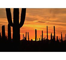 Sundown Tucson  Photographic Print