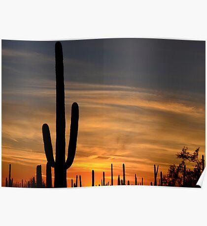 Sundown Tucson 2 Poster