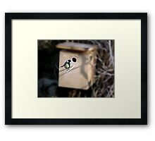 AND WHO ARE YOU?? Framed Print