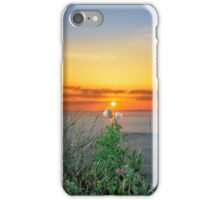 tall thistles on the wild atlantic way at sunset iPhone Case/Skin