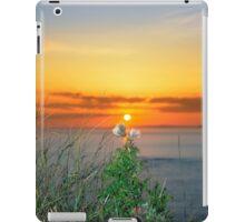 tall thistles on the wild atlantic way at sunset iPad Case/Skin