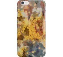 Cinnamon Spice ~ iPhone/iPod Case iPhone Case/Skin