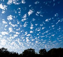 Clouds in Beverly Hills by Rebecca Dru