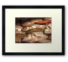 Variety of Fresh Fish Seafood on Ice 2 Framed Print