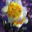 """""""Spring Fling"""" by Melinda Stewart Page"""