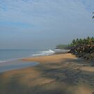 Palm Tree over Black Beach Varkala by SerenaB