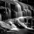 Tennessee Falls - BW by   Paul W. Faust