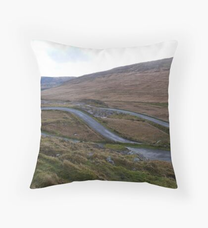 The Healy Pass Throw Pillow