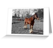 Landis Valley Horse and Red Wagon III Greeting Card