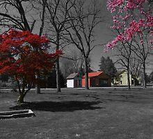 Landis Valley Millstone Grove 3 by purplefoxphoto