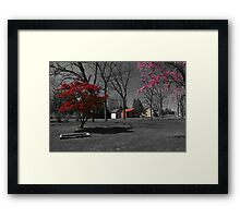 Landis Valley Millstone Grove 3 Framed Print