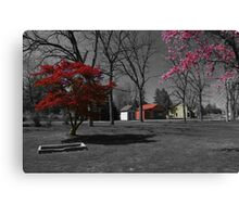Landis Valley Millstone Grove 3 Canvas Print