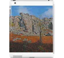 Stanage Edge Derbyshire Dales iPad Case/Skin