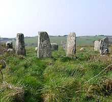 Bohonagh Stone Circle by Michael Mitchell