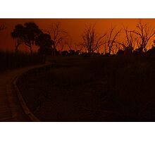 Fiery night by the dried beds of the wetlands Photographic Print