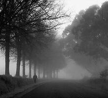 Moving car - Walking the dog by Mel Brackstone