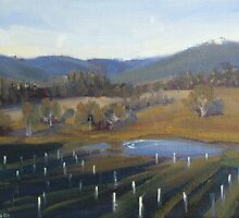 Start of a new vineyard by Tash  Luedi Art