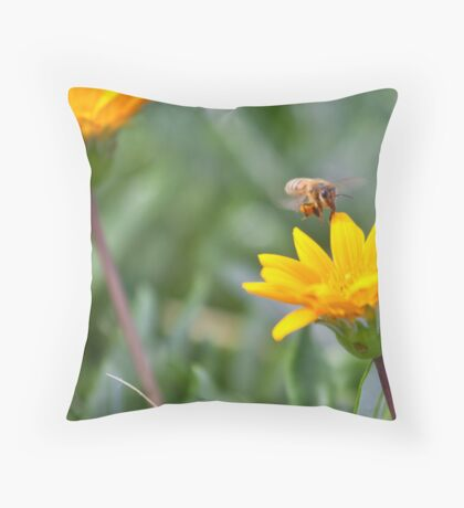 21st March 2012 Throw Pillow