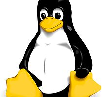 Linux Pinguin by Finzy