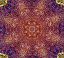 Digital Mandala : Colour Coded vignette Sticker