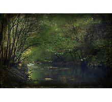 Respite Photographic Print