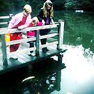 Koi Pond! by Natasha O'Connor