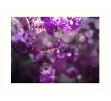 The Colour Purple Art Print