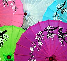Chinese Parasols by Anthony Woolley