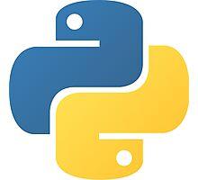 Python logo Photographic Print