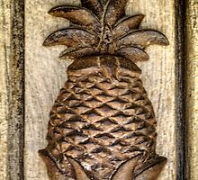 Ananas Heurtoir de Porte (multi-HDR) by James Zickmantel